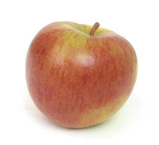 Apple-braeburn