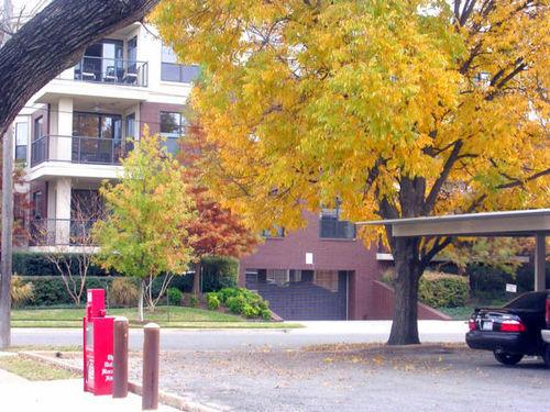 Autumn_004