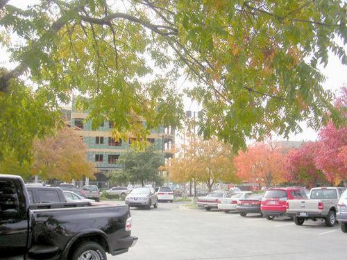 Autumn_Kroger Parking Lot