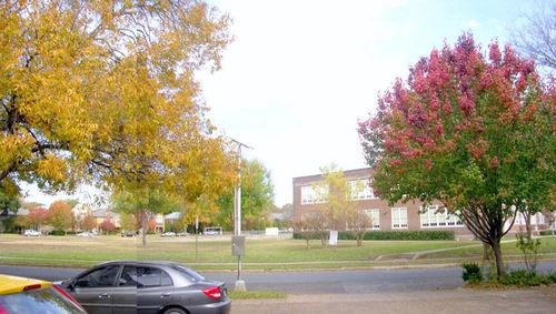 Autumn_schoolyard