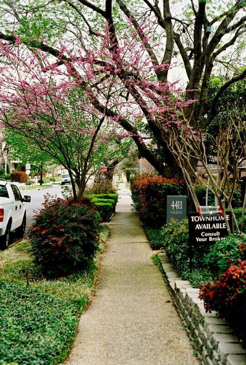 Spring 2009_001