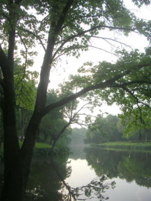 Turtle_creek_051008